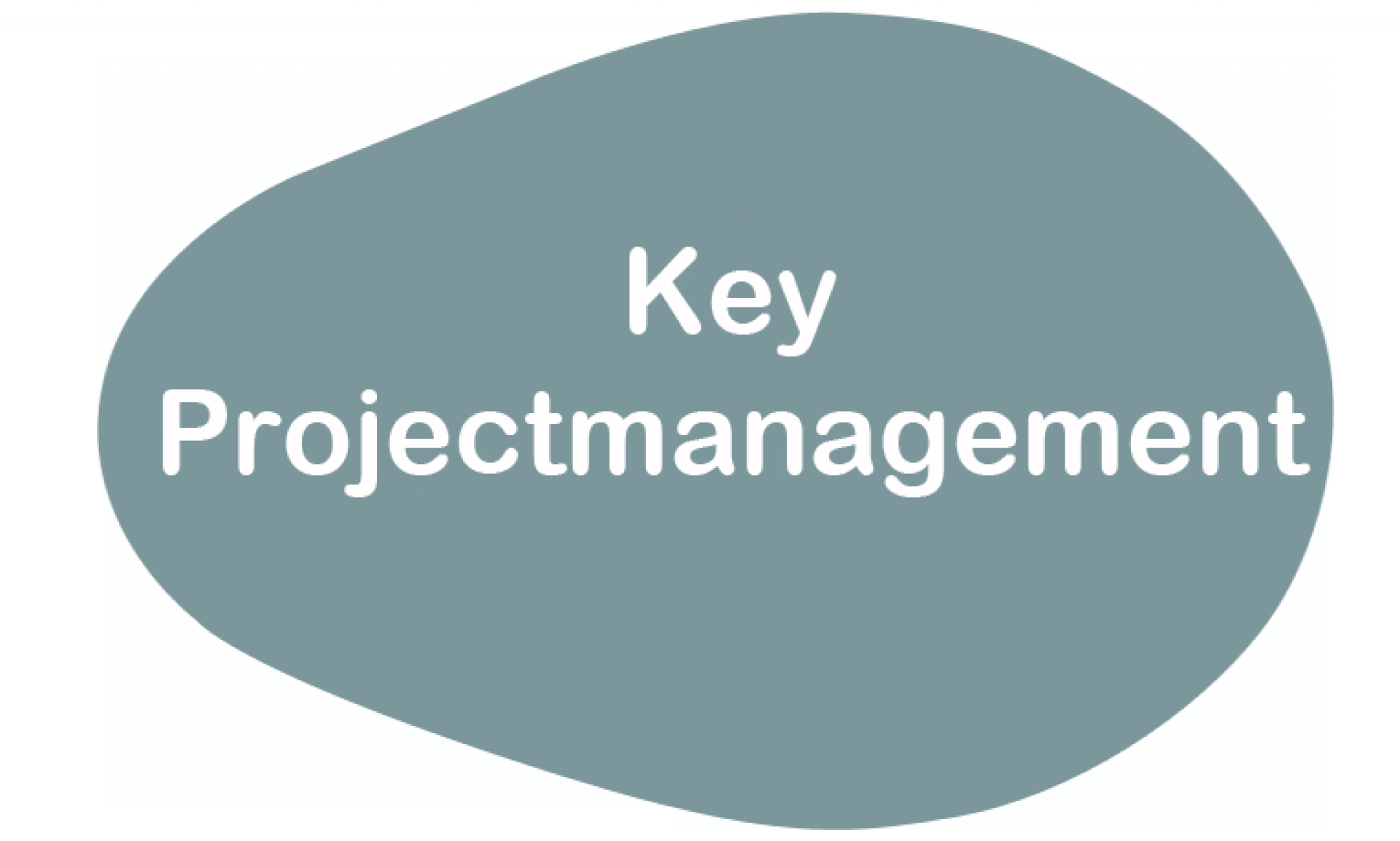 Project Management and Consultancy